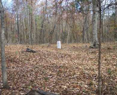 *BUTTER CREEK CEMETERY VIEW,  - Van Buren County, Arkansas |  *BUTTER CREEK CEMETERY VIEW - Arkansas Gravestone Photos