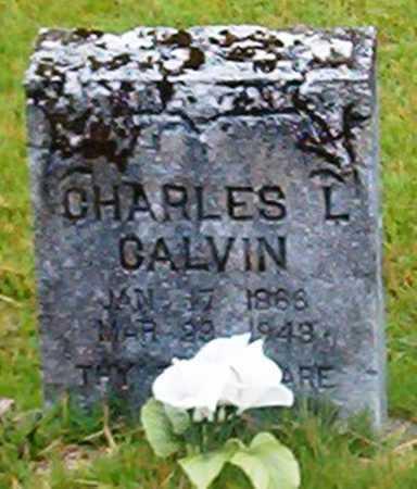 CALVIN, CHARLES L - Van Buren County, Arkansas | CHARLES L CALVIN - Arkansas Gravestone Photos