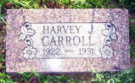 CARROLL, HARVEY J - Van Buren County, Arkansas | HARVEY J CARROLL - Arkansas Gravestone Photos