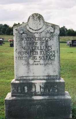"COLLUMS, KATHERINE J.  ""KATE"" - Van Buren County, Arkansas 