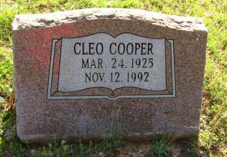 COOPER, CLEO - Van Buren County, Arkansas | CLEO COOPER - Arkansas Gravestone Photos
