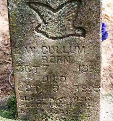 CULLUM, B W - Van Buren County, Arkansas | B W CULLUM - Arkansas Gravestone Photos