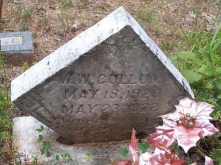 CULLUM, W W - Van Buren County, Arkansas | W W CULLUM - Arkansas Gravestone Photos