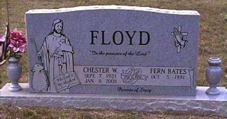 FLOYD, CHESTER W. - Van Buren County, Arkansas | CHESTER W. FLOYD - Arkansas Gravestone Photos