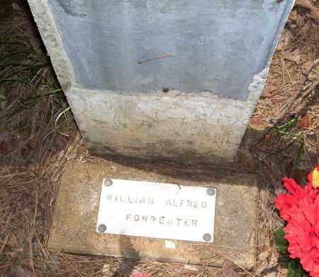 FORRESTER, WILLIAM ALFRED - Van Buren County, Arkansas   WILLIAM ALFRED FORRESTER - Arkansas Gravestone Photos