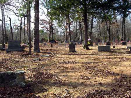 *OVERVIEW,  - Van Buren County, Arkansas |  *OVERVIEW - Arkansas Gravestone Photos