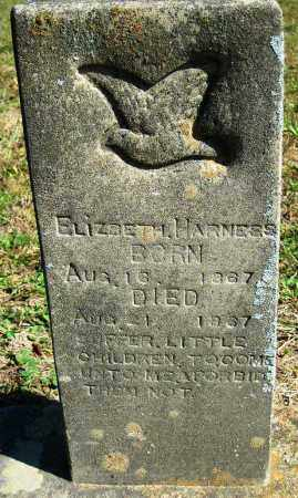 HARNESS, ELIZABETH - Van Buren County, Arkansas | ELIZABETH HARNESS - Arkansas Gravestone Photos