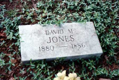 JONES, DAVID M. - Van Buren County, Arkansas | DAVID M. JONES - Arkansas Gravestone Photos