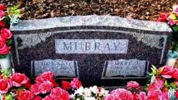 MURRAY, MARY J - Van Buren County, Arkansas | MARY J MURRAY - Arkansas Gravestone Photos