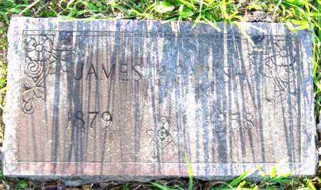 PARISH, JAMES - Van Buren County, Arkansas   JAMES PARISH - Arkansas Gravestone Photos