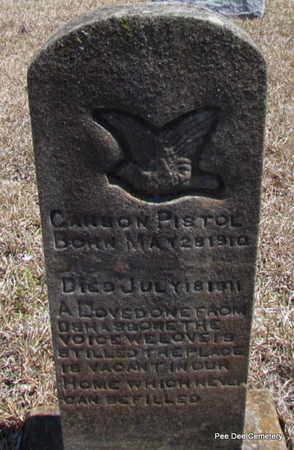 PISTOLE, CARSON - Van Buren County, Arkansas | CARSON PISTOLE - Arkansas Gravestone Photos