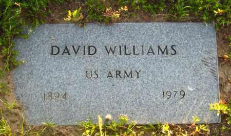 WILLIAMS  (VETERAN), DAVID - Van Buren County, Arkansas | DAVID WILLIAMS  (VETERAN) - Arkansas Gravestone Photos