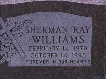 WILLIAMS, SHERMAN RAY - Van Buren County, Arkansas | SHERMAN RAY WILLIAMS - Arkansas Gravestone Photos