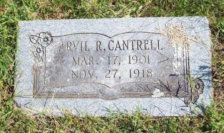CANTRELL, ARVIL R - Washington County, Arkansas | ARVIL R CANTRELL - Arkansas Gravestone Photos