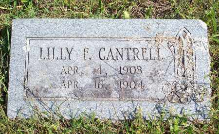 CANTRELL, LILLY F - Washington County, Arkansas | LILLY F CANTRELL - Arkansas Gravestone Photos