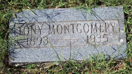 MONTGOMERY, TONY - Washington County, Arkansas | TONY MONTGOMERY - Arkansas Gravestone Photos