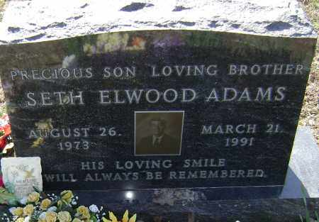 ADAMS, SETH ELWOOD - Washington County, Arkansas | SETH ELWOOD ADAMS - Arkansas Gravestone Photos