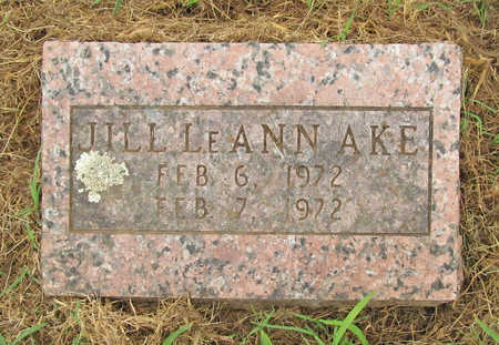 AKE, JILL LEANN - Washington County, Arkansas | JILL LEANN AKE - Arkansas Gravestone Photos