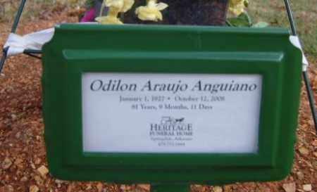 ANGUIANO, ODILON ARAUJO - Washington County, Arkansas | ODILON ARAUJO ANGUIANO - Arkansas Gravestone Photos