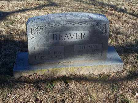 BEAVER, LUCY ELLEN - Washington County, Arkansas | LUCY ELLEN BEAVER - Arkansas Gravestone Photos
