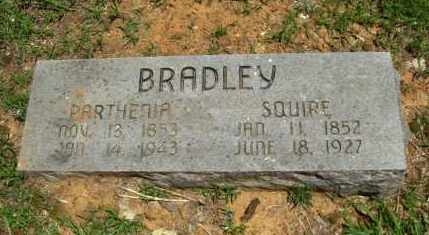 MCCAULEY BRADLEY, PARTHENIA - Washington County, Arkansas | PARTHENIA MCCAULEY BRADLEY - Arkansas Gravestone Photos