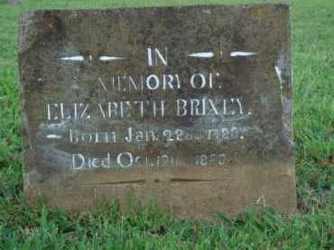 BRIXEY, ELIZABETH - Washington County, Arkansas | ELIZABETH BRIXEY - Arkansas Gravestone Photos