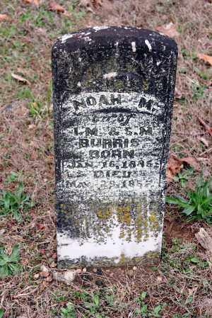 BURRIS, NOAH M. - Washington County, Arkansas | NOAH M. BURRIS - Arkansas Gravestone Photos