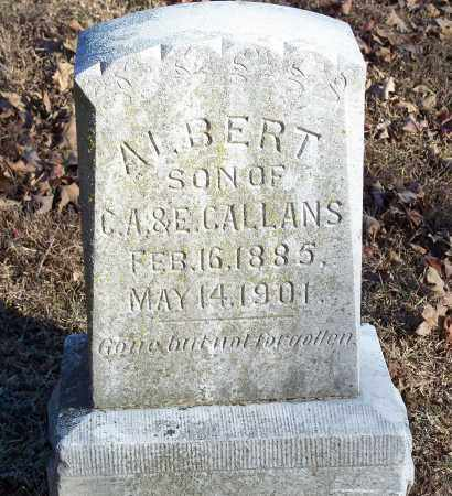 CALLANS, ALBERT - Washington County, Arkansas | ALBERT CALLANS - Arkansas Gravestone Photos