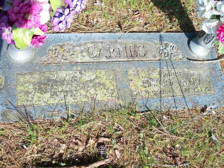 CARNES, CHARLOTTE AVICE - Washington County, Arkansas | CHARLOTTE AVICE CARNES - Arkansas Gravestone Photos