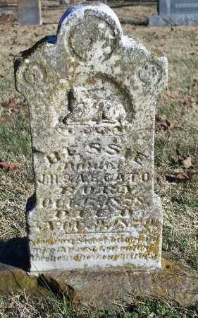 CATO, BESSIE - Washington County, Arkansas | BESSIE CATO - Arkansas Gravestone Photos