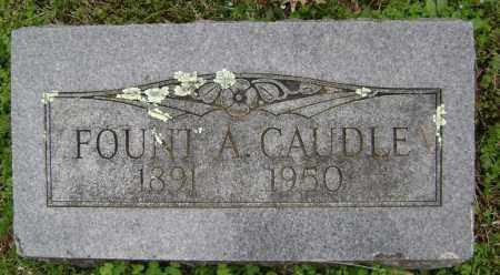 CAUDLE  (VETERAN 2 WARS), FOUNTAIN ALBERT - Washington County, Arkansas | FOUNTAIN ALBERT CAUDLE  (VETERAN 2 WARS) - Arkansas Gravestone Photos