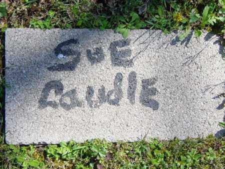 CAUDLE, SUE - Washington County, Arkansas | SUE CAUDLE - Arkansas Gravestone Photos