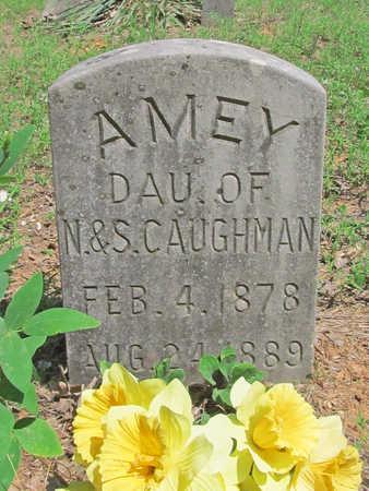 CAUGHMAN, AMEY - Washington County, Arkansas | AMEY CAUGHMAN - Arkansas Gravestone Photos