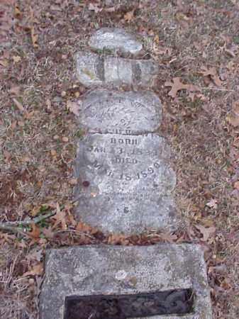 CHENOWITH, SAL - Washington County, Arkansas | SAL CHENOWITH - Arkansas Gravestone Photos