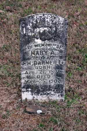 DARNEILL, MARY A. - Washington County, Arkansas   MARY A. DARNEILL - Arkansas Gravestone Photos