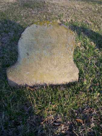 DOGGETT, ACCA - Washington County, Arkansas | ACCA DOGGETT - Arkansas Gravestone Photos
