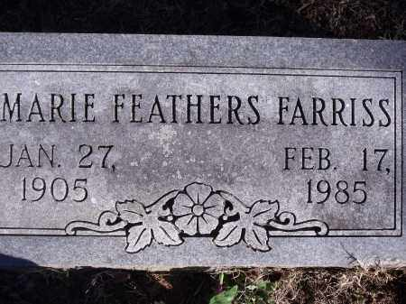 PARKER FARRISS, MARIE - Washington County, Arkansas | MARIE PARKER FARRISS - Arkansas Gravestone Photos