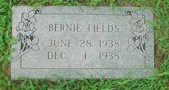 FIELDS, BERNIE - Washington County, Arkansas | BERNIE FIELDS - Arkansas Gravestone Photos
