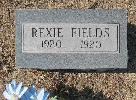 FIELDS, REXIE - Washington County, Arkansas | REXIE FIELDS - Arkansas Gravestone Photos