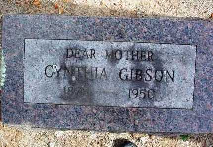 JOHNSON GIBSON, CYNTHIA - Washington County, Arkansas | CYNTHIA JOHNSON GIBSON - Arkansas Gravestone Photos