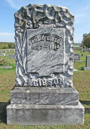 GIBSON, NANNIE - Washington County, Arkansas | NANNIE GIBSON - Arkansas Gravestone Photos