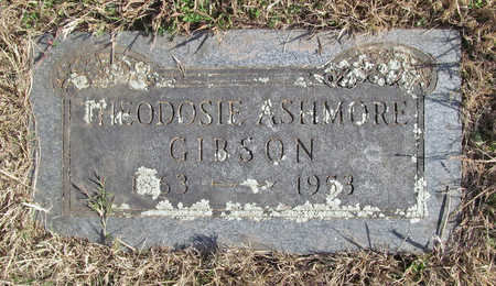 ASHMORE GIBSON, THEODOSIE - Washington County, Arkansas | THEODOSIE ASHMORE GIBSON - Arkansas Gravestone Photos