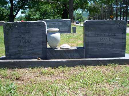 TODD, CAROL ANN - Washington County, Arkansas | CAROL ANN TODD - Arkansas Gravestone Photos