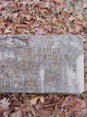 HOLLAWAY, JAMES THOMAS - Washington County, Arkansas | JAMES THOMAS HOLLAWAY - Arkansas Gravestone Photos