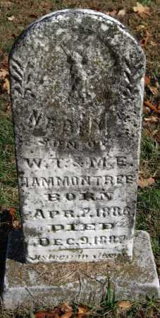 HAMMONTREE, NEELY - Washington County, Arkansas | NEELY HAMMONTREE - Arkansas Gravestone Photos