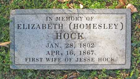 HOMESLEY HOCK, ELIZABETH - Washington County, Arkansas | ELIZABETH HOMESLEY HOCK - Arkansas Gravestone Photos