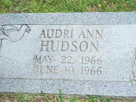 HUDSON, AUDRI ANN - Washington County, Arkansas | AUDRI ANN HUDSON - Arkansas Gravestone Photos
