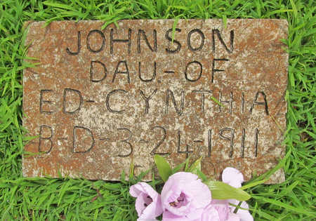 JOHNSON, INFANT DAUGHTER - Washington County, Arkansas | INFANT DAUGHTER JOHNSON - Arkansas Gravestone Photos