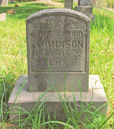 JOHNSON, OLE SIGURD - Washington County, Arkansas | OLE SIGURD JOHNSON - Arkansas Gravestone Photos