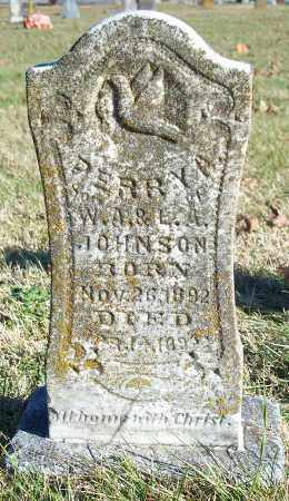JOHNSON, PERRY A. - Washington County, Arkansas | PERRY A. JOHNSON - Arkansas Gravestone Photos